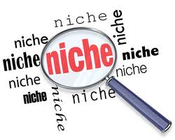 The Niche Agent What Niche Marketing is NOT!