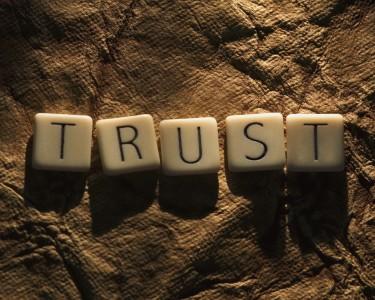 Trust The Niche Agent